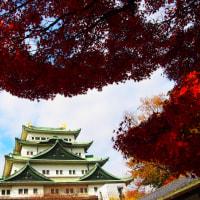 『想いでの紅葉』 名古屋城