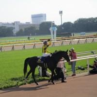 第78回優駿牝馬(オークス)を観に行く @東京競馬場