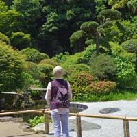 竹の寺・報国寺