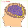 脳内メーカー(笑)