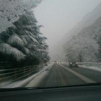 昨日、初雪