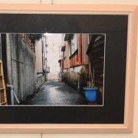 市民アマチュア美術展が加賀市美術館で開催中
