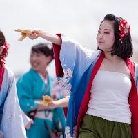 篠山よさこいまつり2017 丹波篠山楽空間2