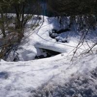 例年より雪は多いい
