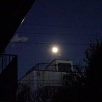 今年最初の新年会と満月