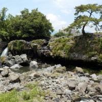 三島溶岩と湧水めぐりの実習