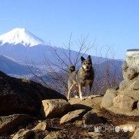平成29年2月23日(木) 富士山の日♪