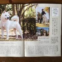 ゴン太&サラ雑誌に載りました❣️