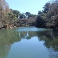 新宿御苑(その4)