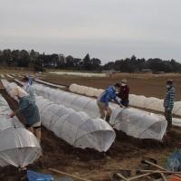 農業実践教室第22期:2回目~トウモロコシの種まき