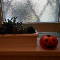 窓辺は「ハロウィン」 仕様。。。