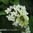 衛星通信記録6月27日(火)