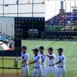 夏の高校野球応援へ 『ベゴニア』の花で涼しさ届け!