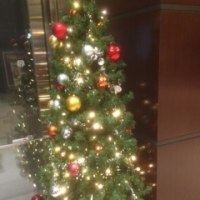 丸の内のクリスマスツリー小