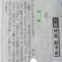 """居酒屋E""""e""""の女将の川柳と俳句   「神戸新聞文芸」シリーズ1"""