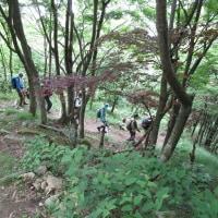 ㉜ 灰ヶ峰山登山 : 坂歩こう会  UP7日目最終章