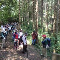 森林セラピー山口健康登山~日暮ヶ岳