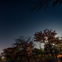 星空と紅葉が綺麗でした(岩見沢玉泉館跡地公園2016)