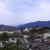 小田原城とカモメ