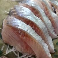 なまらできたて!イカゴロのコクと旨味バッチリ♪自家製「生ら(なまら)手作り塩辛」!!発寒かねしげ鮮魚店の魚屋シゲちゃん。