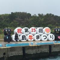 黒島牛祭り。