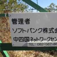 ㉛ 火山~丸山~大茶臼山縦走登山 : 丸山山頂  UP7日目