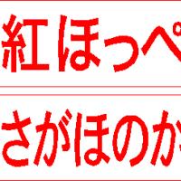 DS1545 イチゴ 品種印