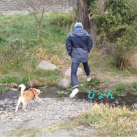まだ多摩川で遊びました。