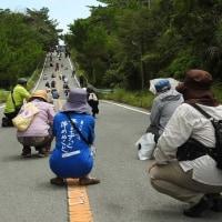 【KSM】沖縄の米軍基地を警備する機動隊員の皆さんへ 国民の激励の声!2016年10月20日