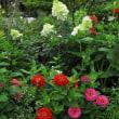 花の香りに包まれて 7月の庭の花