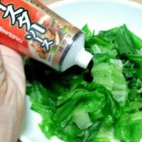 エスビー食品『李錦記  オイスターソース』 #RSP57
