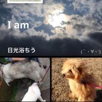 I am 日光浴ちうにつき〜🎵