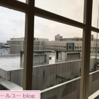 札幌 ルース・ロウ 札幌東急百貨店