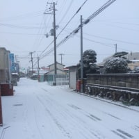 小野市は今朝も雪…