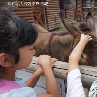 動物園…続き♪