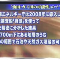 アンカー青山繁晴のニュースDEズバリ!2012.6.20