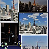 東京タワーの見える病院