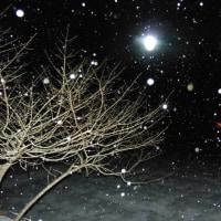 風と激しい雪になっています!