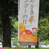 みやざきマンゴーの日