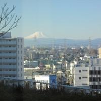 久しぶりの「富士山」 川越からです!