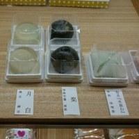 tea ceremony workshop in English 英語解説、茶道ワークショップ
