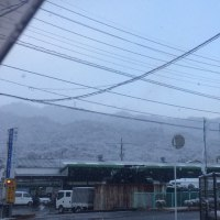 安佐南区は雪景色(^ ^)
