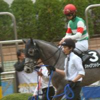 2回 中山 6日 9R 山桜賞 ジャアイントリープ 結果