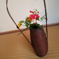 暖色系にまとめた花