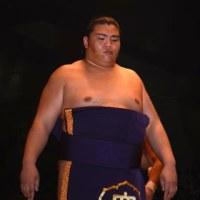 『 郷里のお相撲さん:御嶽海・・・ 』