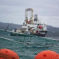 破損が続く網張フロートの修理に追われる作業員たち。