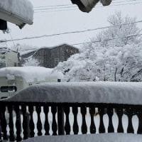 二度目の大雪