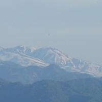 山の家からの午後の白山遠望・・・そろそろ雪も少なくなって、真っ白からまだら模様へ・・