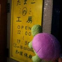 高円寺裏通り猫展