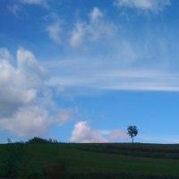 今日も 空がとっても青いから